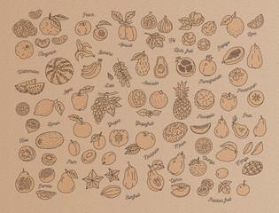 Fruit icon, Hand-drawn set of fruits on kraft paper, cardboard. Menu design template. Vector flat illustration