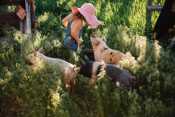 Toddler girl in denim overalls and a big sun hat feeding pigs on a farm.