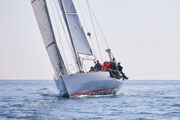 Sailboat Racing on a Sunny Day