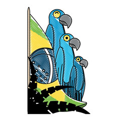 Brazilian flag with macaw birds over white background, vector illustration