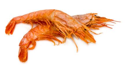 Raw fresh shrimp isolated on white background