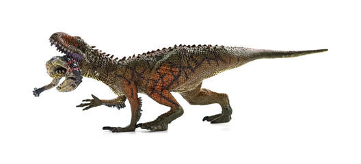 Search Photos Carcharodontosaurus