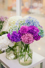 Bouquet of colorful hydrangea in vase in flower shop