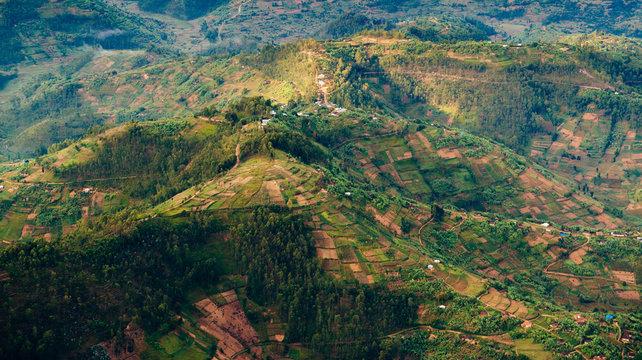 Virunga Valley - Rwanda