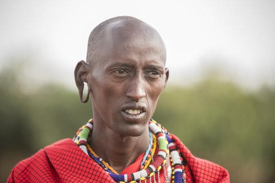 Maasai man portrait