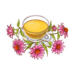 echinacea tea illustration