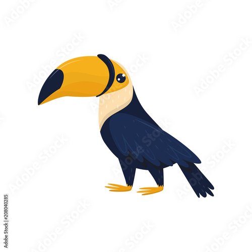 Cartoon character of toucan  Tropical bird with big brightly