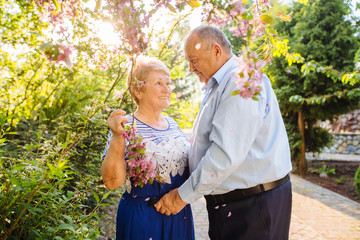 Beautiful senior couple in love looks at each other under pink blooming tree in sunset outside in spring garden nature. Love, life, relationship concept. Wall mural