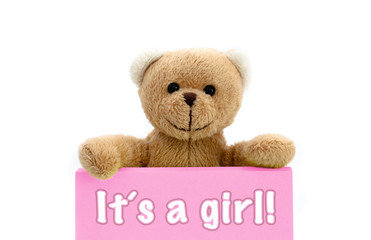 It´s a girl message written on pink card with brown teddy bear holding with the two hands the note with the message. Photo isolated in a seamless white background. Concept for newborn baby girl.