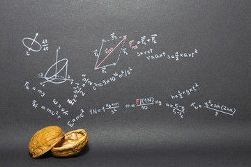 Concept of the phrase physics in a nutshell. Physics formulas drawn on black paper with walnuts