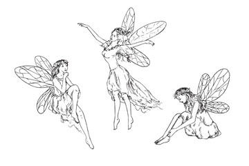 Beautiful three young fairies dancing, flying in wind and sitting around, hand drawn outline doodle sketch, black and white vector illustration