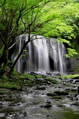 初夏の達沢不動滝(福島県・猪苗代町)