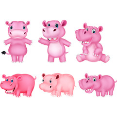Cartoon hippo collection set