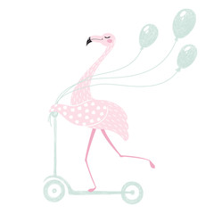 Flamingo on scooter