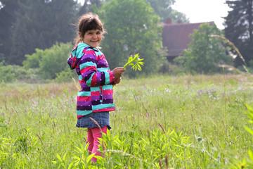 Landkind: Lächelndes kleines Mädchen steht auf der Wiese pflückt Blumen