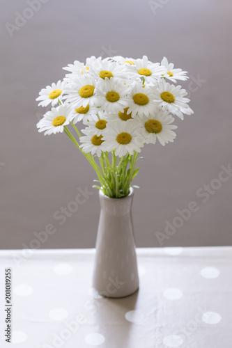 Flower Of Daisies In A Vase In The Interior Stock Photo And