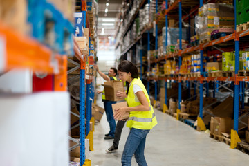 Workers working in warehouse