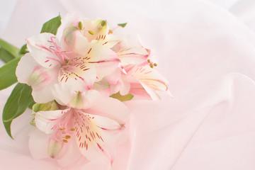 ピンクのアルストロメリアの花