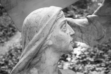 Virgin Mary cries
