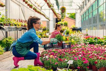 Young women working in beautiful garden center