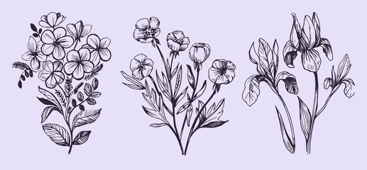 Flowers vector sketch