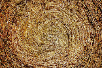 Circular pattern of harvested rolled hay with warm yellow and orange tones and texture. Spiral background design.