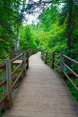 Scenic pathway along the Gooseberry River at Gooseberry Falls State Park in Minnesota