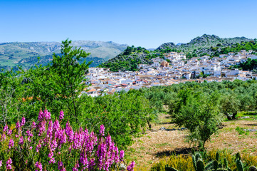 Montejaque, Andalusia, Spain
