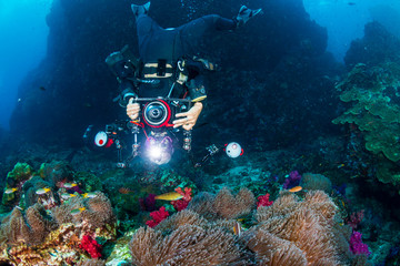 Female SCUBA diver with a camera on a tropical coral reef