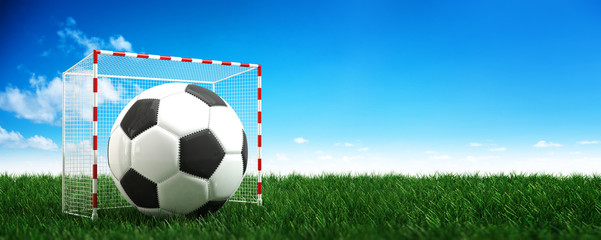 Panorama banner of a soccer ball in a goalpost. 3d Rendering