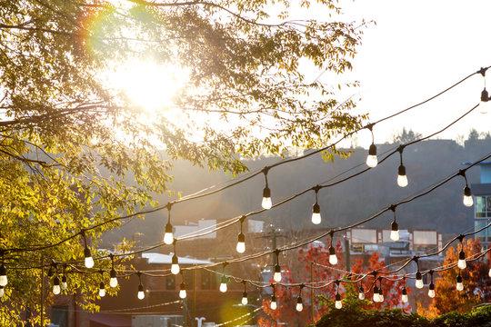 Asheville Lights
