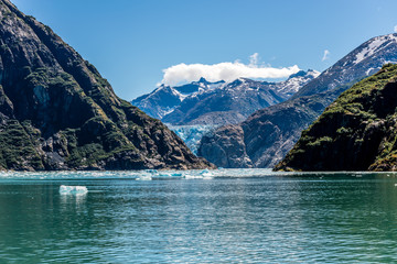 Tracy Arm Fjord's Icebergs, Mountains and Sawyer Glacier Wall mural