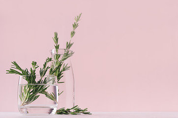 Gentle spring vanilla background of fresh bouquet rosemary in glass and retro milk bottle on white table and pink wall.