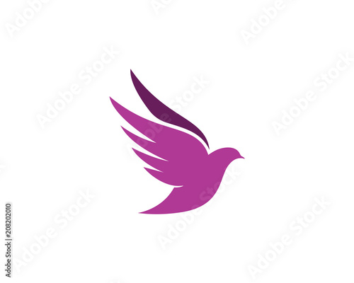 bird wing dove logo template stock image and royalty free vector