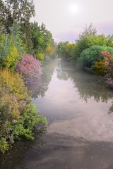 River with flowering bushes