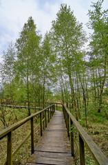 Birds of paradise reserve in Gdansk near Bal