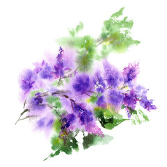 Lilac bouquet. Watercolor lilac flowers. Greeting floral card. Purple floral card.