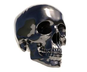 Human Skull Art Image