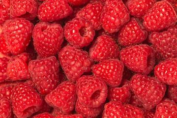 Fresh raspberry background. Macro food photography.