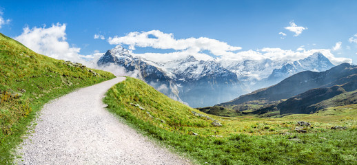 Wall Mural - Berglandschaft in den Schweizer Alpen im Sommer