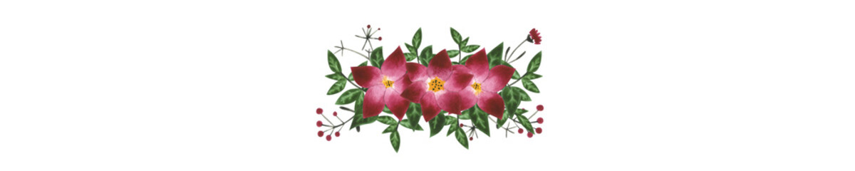 Red and pink flowers with green leaves on white isolated background. Watercolor illustration. Concept. Collage