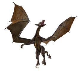 Dragon Soaring Upwards - fantasy illustration