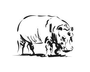 Vector sketch of a hippopotamus