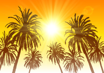 Palm tree silhouettes on sunset sky background