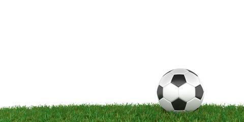 Fußball auf Rasen, weißer Hintergrund