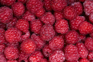 Background of a beautiful fresh raspberry. Healthy food. Vegetarianism.