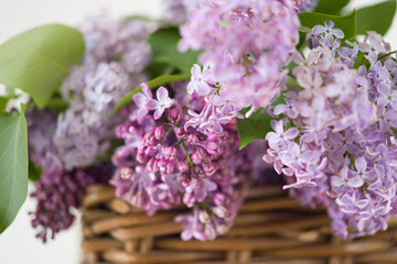 Lilac spring bouquet in wooden basket on table with scissors and rope