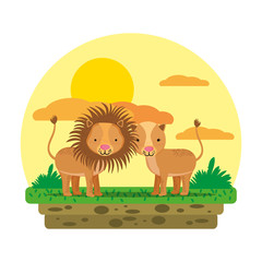 cute couple lion wild animal in the landscape