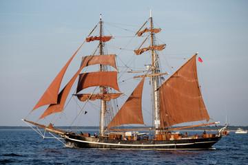 D, Ostsee, Warnemünde, Hanse-Sail, Tall Ships, Großsegeler vor Warnemünde
