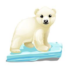 Cute polar bear floats on a drifting ice floe isolated on white background. Vector illustration.